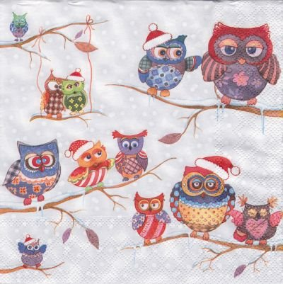 Owls in Winterland (S)