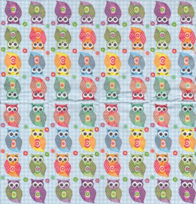 Funny Owls (T)